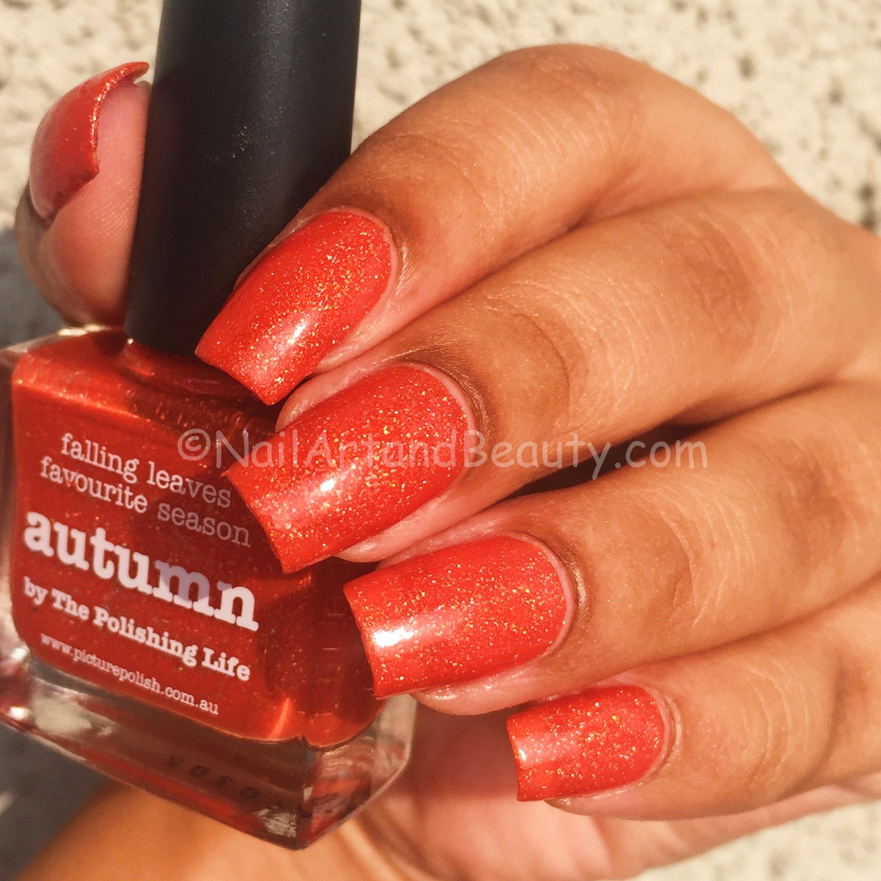 picture-polish-autumn-swatches-