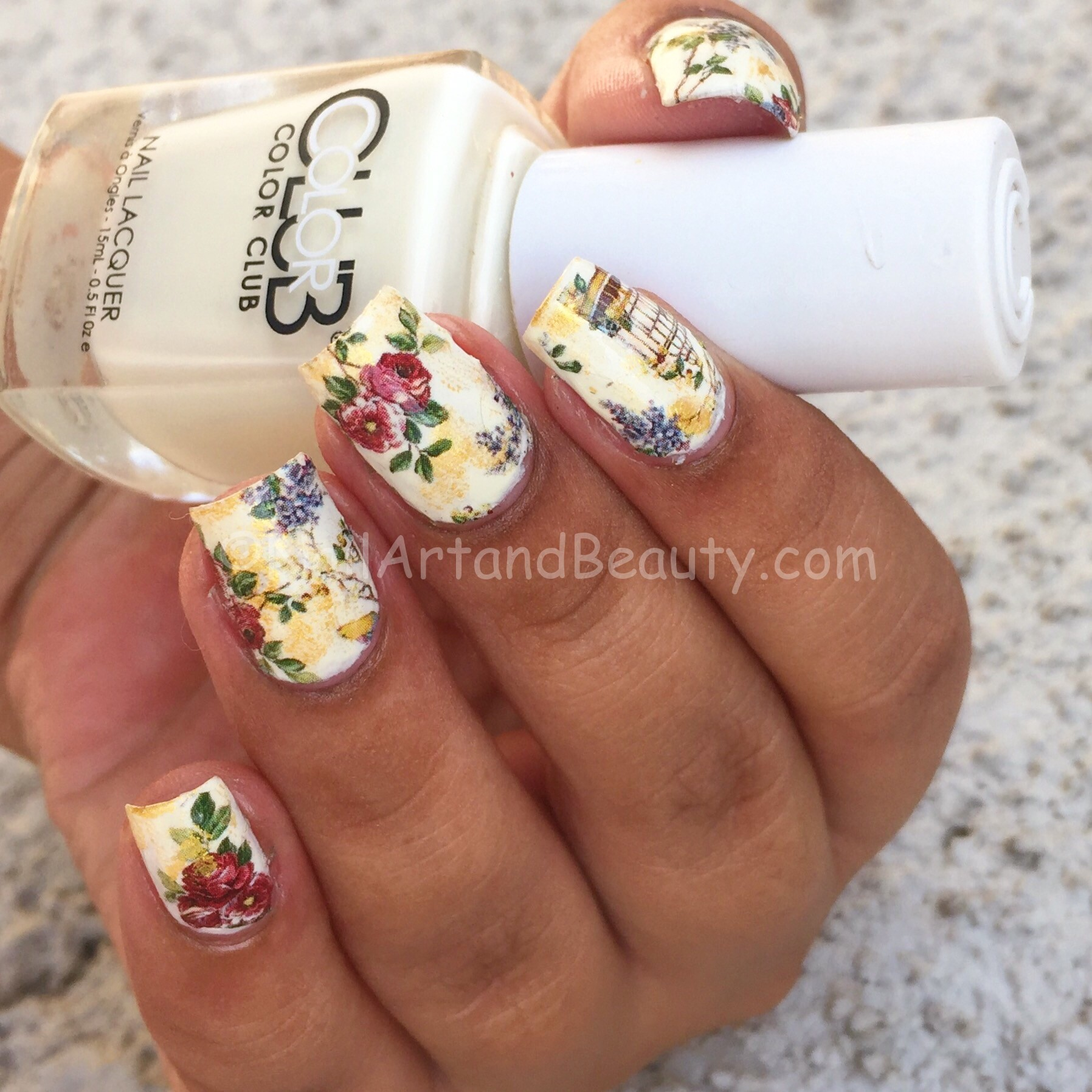 Vintage Rose and Caged Bird Nails