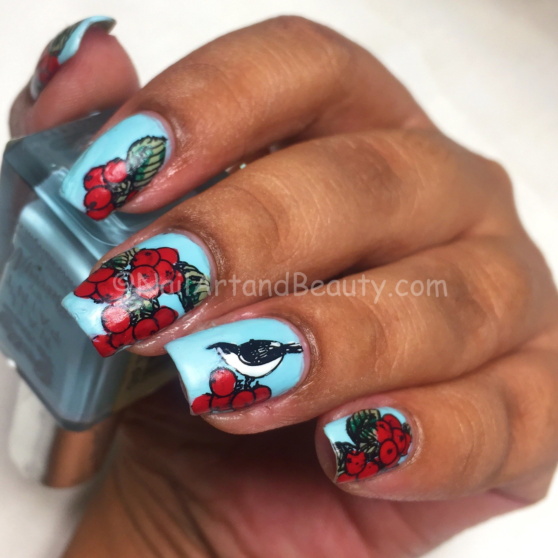 Cherry and Bird Nails