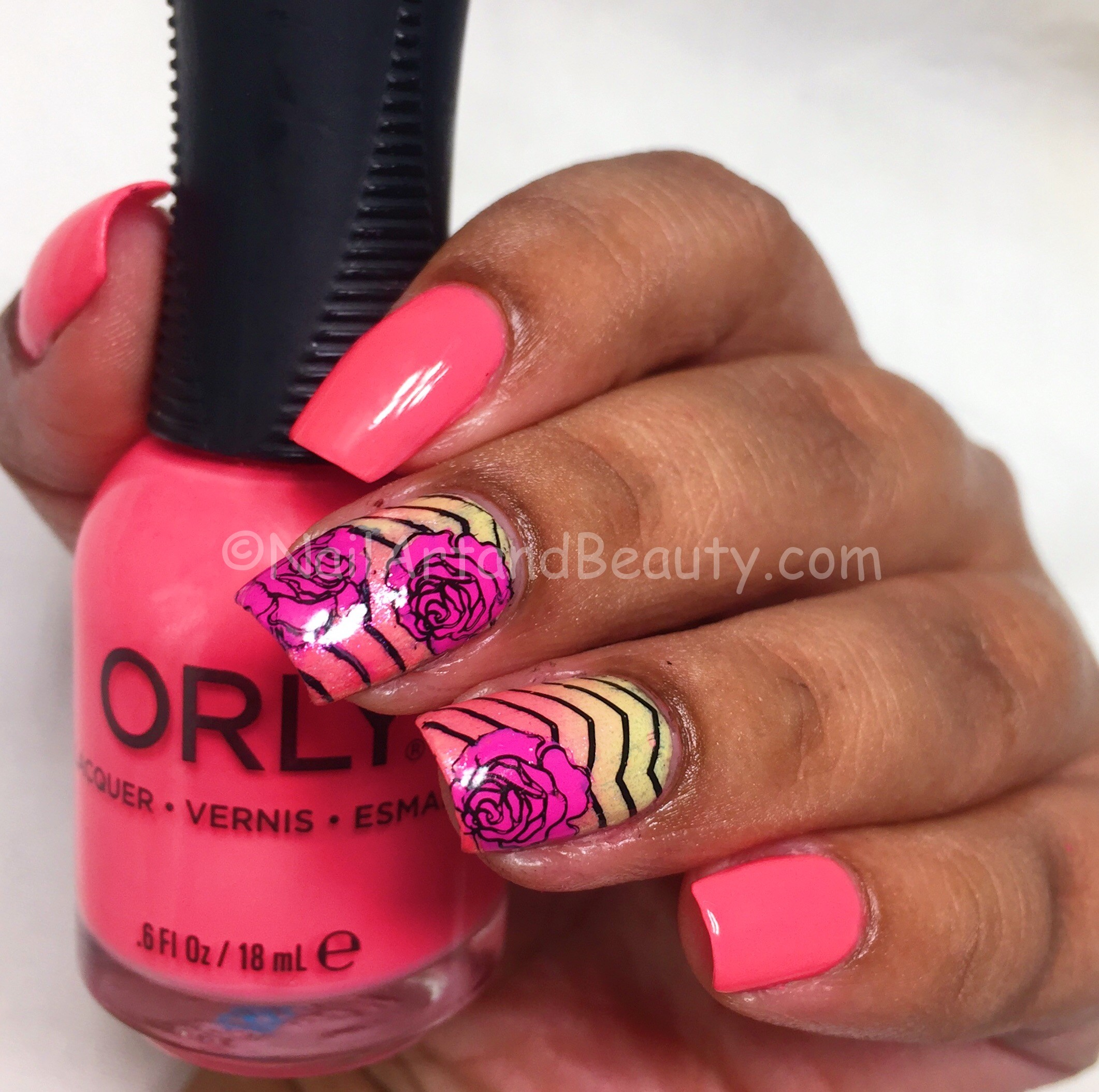 Blushing Roses on Chevron